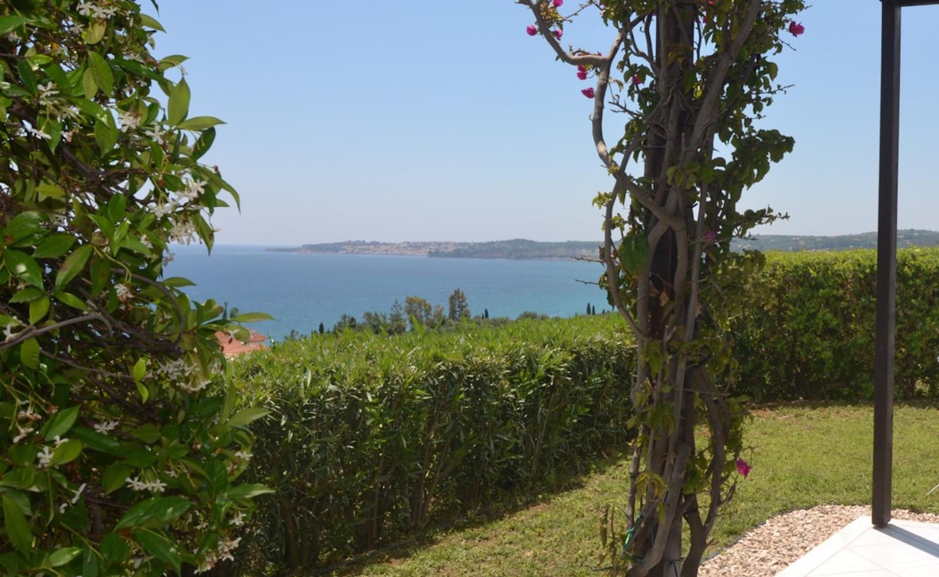 Oleander view